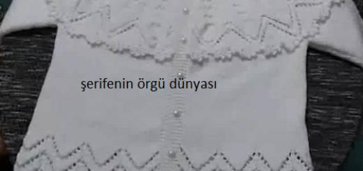 firfir-robali-bebek-hirka-modeli-kopyala
