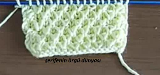 ari-kovani-orgu-modeli-kopyala