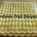 sarı-tomurcuk-battanıye (Kopyala)