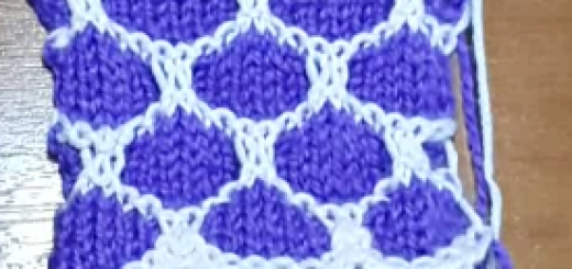 iki renkli petek örgü modeli