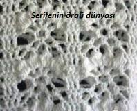 tığ işi çilekler baharlık örgü modeli (3)