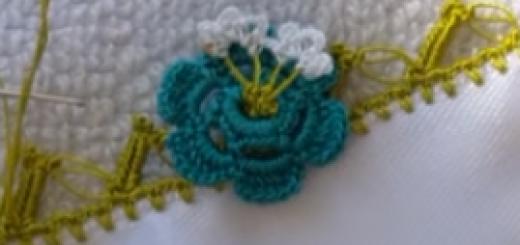 tomurcuklu çiçekler tığ oyası.png2