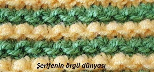iki renkli iri tohumlar örgü modeli (3)