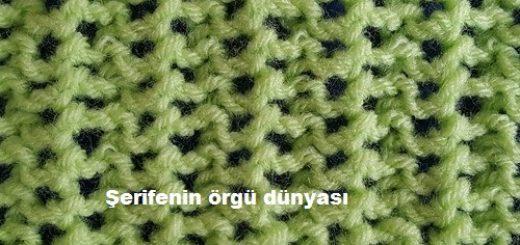 ajurlu baharlık bayan örgü modeli (3)